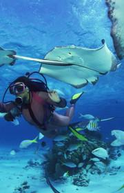 马尔代夫旅游签证怎么办,马尔代夫旅游签证攻略