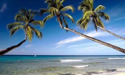 巴巴多斯岛的浪漫蜜月之旅(2)