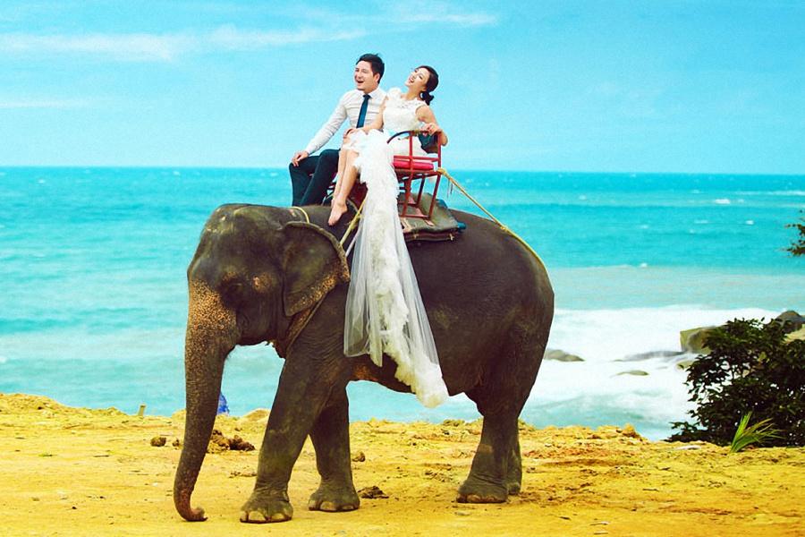 普吉岛旅游婚纱样照之大象