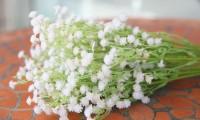 婚礼上常用的花及花语你知道吗?