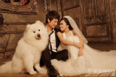 怎么带宠物一起拍摄个性婚纱照