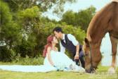 海边婚纱照欣赏牵马拍照好心情