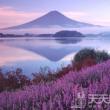 走访6处日本私房婚纱摄影景点!拍出梦幻幸福的瞬间