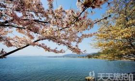 走访6处日本私房婚纱摄影景点!拍出梦幻幸福的瞬间(1)