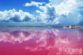 发现拍婚纱的新景点!大自然赠与的粉红色潟湖