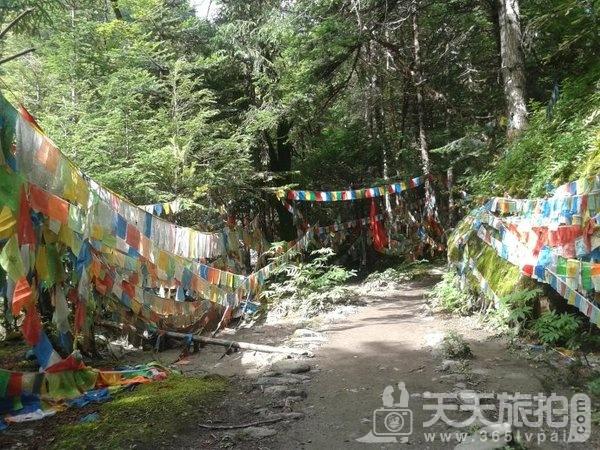 梅里雪山亲子游,畅游香格里拉徒步雨崩【32】