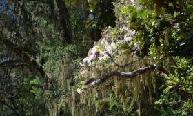 梅里雪山亲子游,畅游香格里拉徒步雨崩(3)
