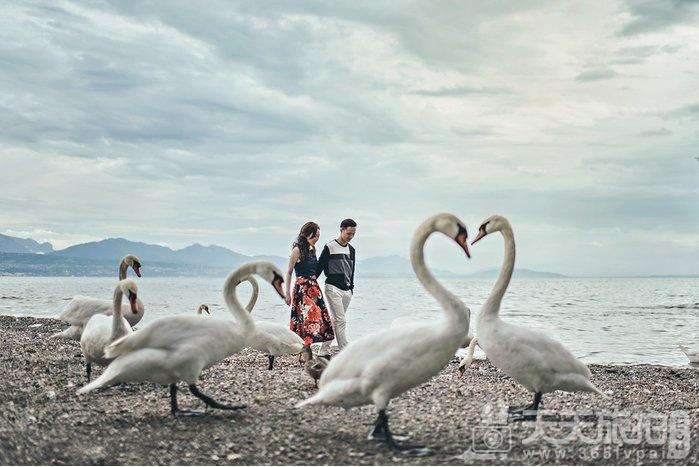 全球50大幸福订婚照 最后一张两个屁屁好性感【8】