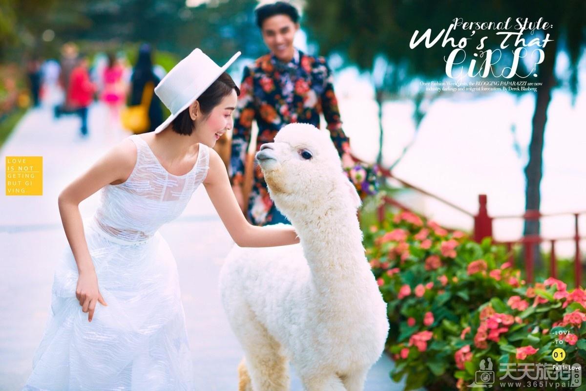 三亚拍婚纱照的地方有哪些 四个外景好地方推荐(蜈支洲岛)