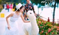 三亚拍婚纱照的地方有哪些 四个外景好地方推荐