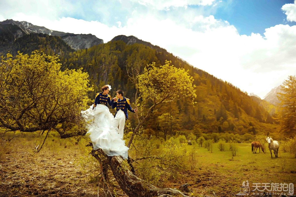 婚纱照的创意很重要,好的创意让你眼前一亮