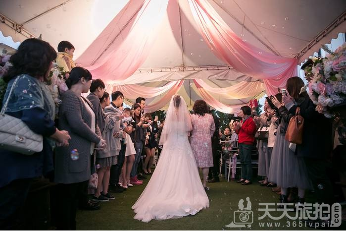 带你看看报道台湾婚礼 充满浪漫风情的青青风车庄园,美到爆【24】