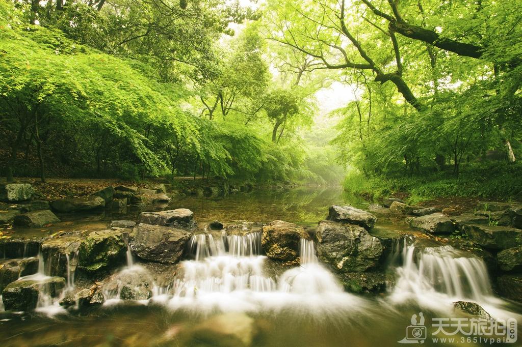 杭州5大拍摄婚纱照热门景点【2】