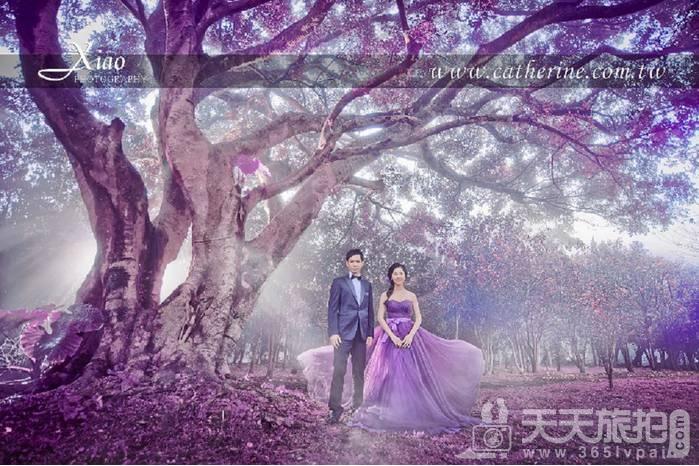 带你看看超梦幻婚礼组合 创造专属婚礼【2】