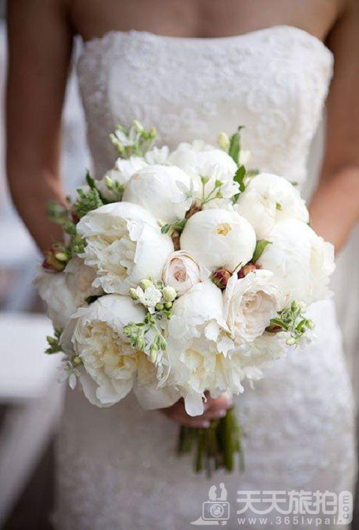带你看看超梦幻婚礼组合 创造专属婚礼【12】