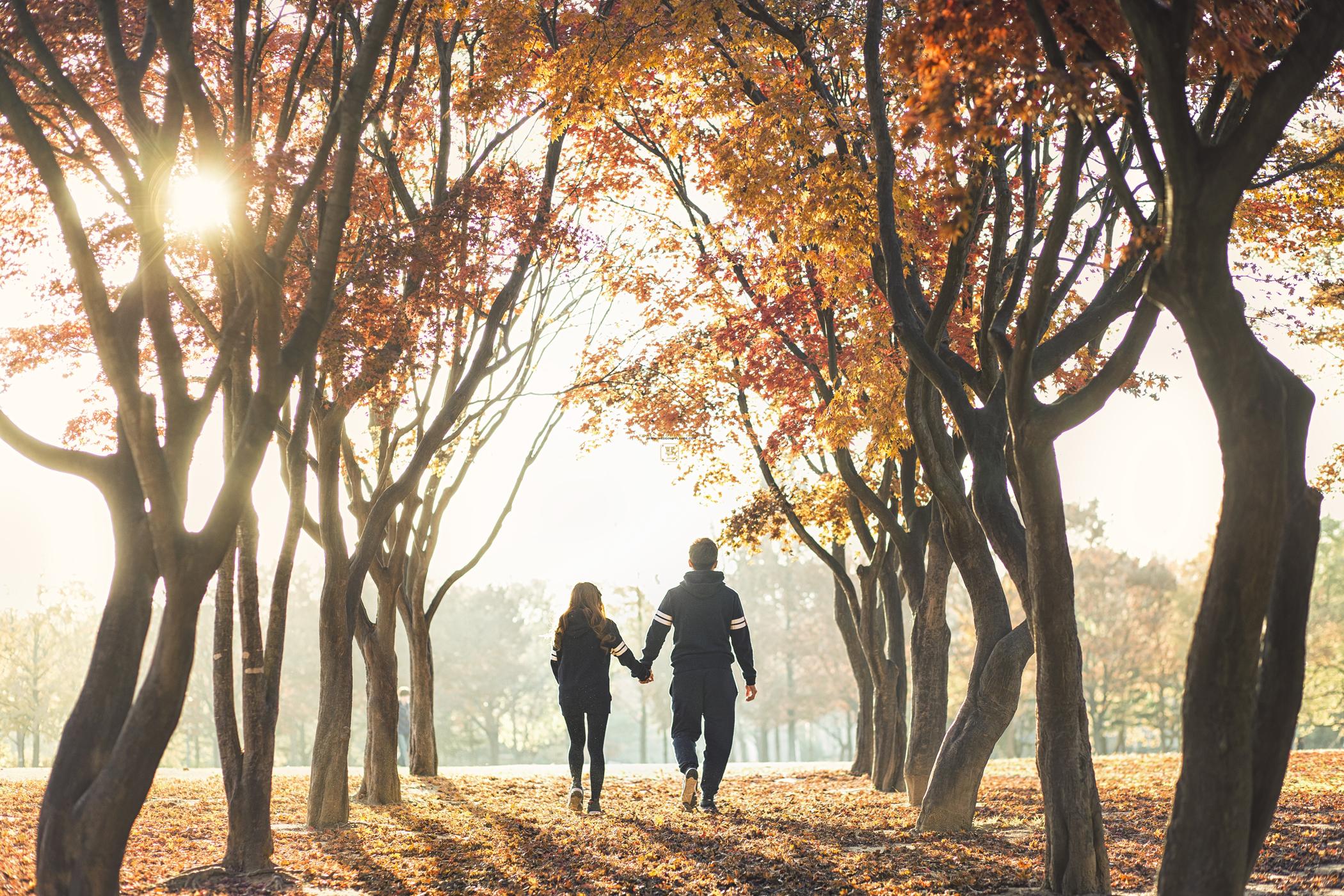 别浪费了秋季的绚烂景色 秋天婚纱照欣赏【10】