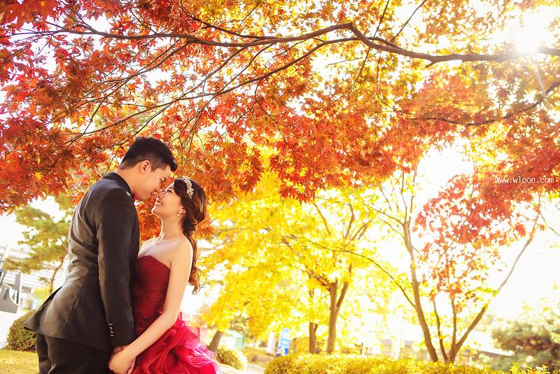 别浪费了秋季的绚烂景色 秋天婚纱照欣赏【14】