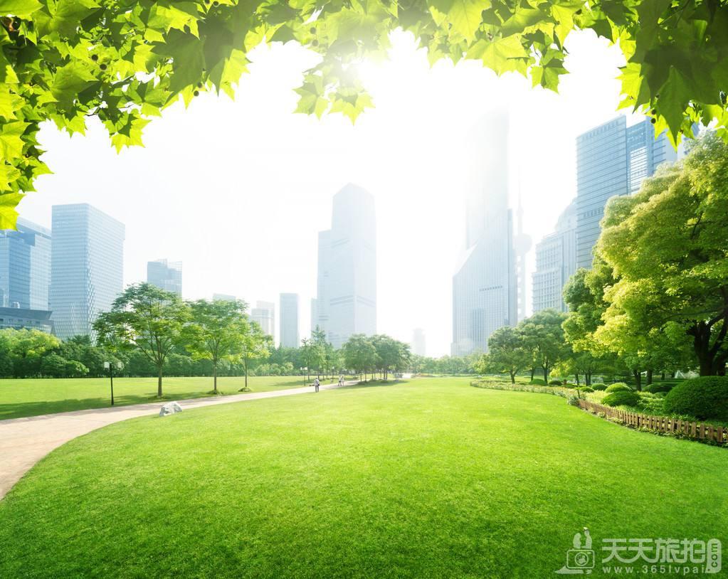 2020上海拍婚纱照的景点推荐
